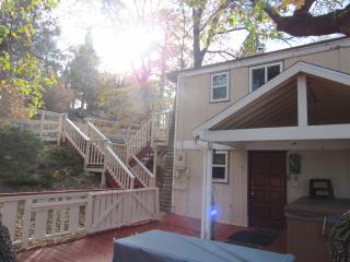 Birkmann House - City of Big Bear Lake vacation rentals
