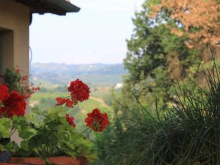 Villa in Tuscany Near Certaldo and the Chianti Region - La Solaia - San Donnino vacation rentals