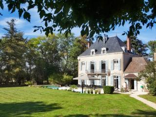 Historic Burgundy Chateau with En suite Bathrooms and Private Heated Pool - Chateau Chalon - Chatenoy-en-Bresse vacation rentals