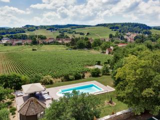 Large Burgundy Chateau with Private Pool and Sauna - Chateau Bourgogne - Mercurey vacation rentals