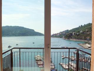 Apartment in Portovenere with Private Garden and Accessible to Cinque Terre - Portovenere vacation rentals