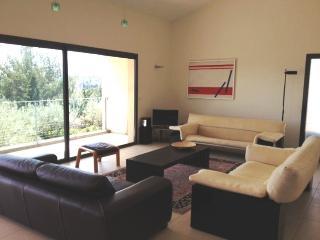 A Modern French Villa near Avignon - Villa Leon - Rochefort du Gard vacation rentals