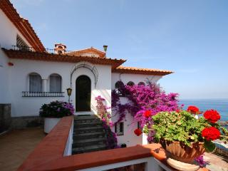 Beautiful Villa Near Sorrento - Villa Flora - Massa Lubrense vacation rentals