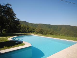 Charming Cottage Near Cortona  - Casa Viola - Teverina di Cortona vacation rentals