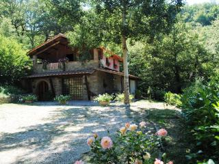 Charming Cottage Near Cortona  - Casa Viola - Teverina di Cortona vacation rentals