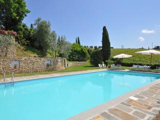 Tuscan Country Villa for Rent Near Florence - Villa Irina - San Casciano vacation rentals