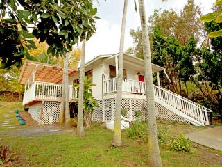 Green Lions cottage - Holualoa vacation rentals