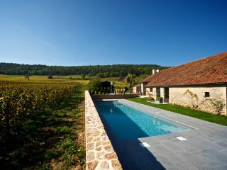 Burgundy Villa with Pool Near Beaune - Villa Meursault - Beaune vacation rentals