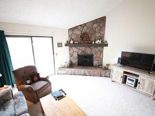 2 bedroom Apartment with Deck in Fraser - Fraser vacation rentals