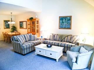 Close to Fletcher Pools, A/C, 6 Pool Passes (fees apply) - FL0580 - Brewster vacation rentals