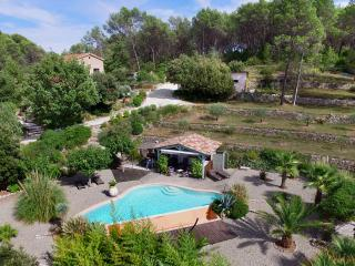 Provencale house with infinity pool - a paradise! - Draguignan vacation rentals