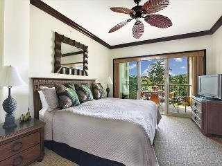 FAST internet  ** COCONUT grove VIEW**  GREAT VALUE - Kapaa vacation rentals