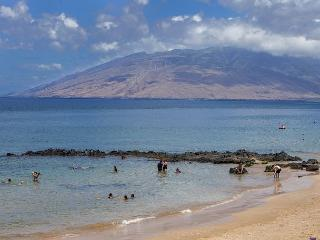 Maui Parkshore #310 2Bed/2Bath Ocean view. - Kihei vacation rentals