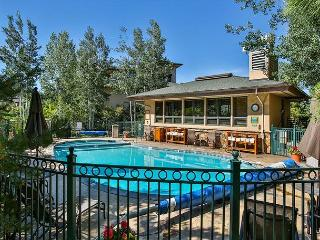 Condo On Mountain with Pool / Hot tub/Fitness Center - Steamboat Springs vacation rentals