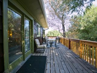 Pikes Peak Mountain Stream 2 Bedroom Jacuzzi Suite - Cascade vacation rentals