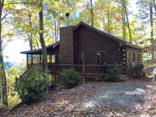 Nugget's Nest - You Won't Forget the Mountain View - Blue Ridge vacation rentals