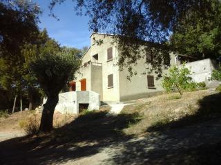 A CASA DI L'ALIVU Chambre Lavande - Patrimonio vacation rentals
