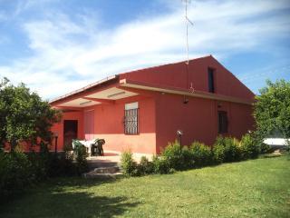 Villa immersa in 6000mq di agrumeto e 180mq prato - Floridia vacation rentals