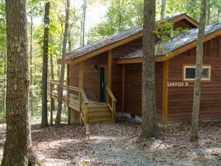 Sunnyside Suite 3B at Adventures on the Gorge - Lansing vacation rentals