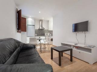 Great apartment in Plaza Mayor (2.4) - Palma de Mallorca vacation rentals