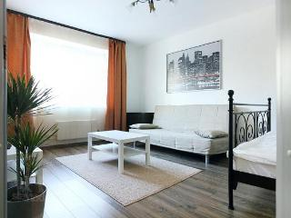 Apartment in Moscow #553 - Moscow vacation rentals