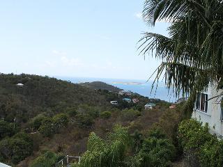 2 bedroom Condo with Internet Access in Cruz Bay - Cruz Bay vacation rentals