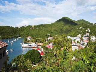 Perfect House with Internet Access and Dishwasher - Cruz Bay vacation rentals