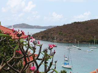 Perfect Condo with Internet Access and A/C - Cruz Bay vacation rentals