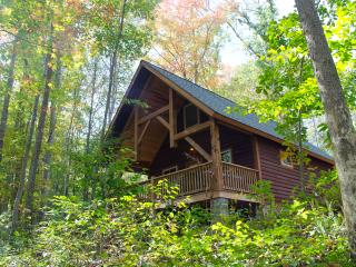 Old Nasty at Adventures on the Gorge - Lansing vacation rentals