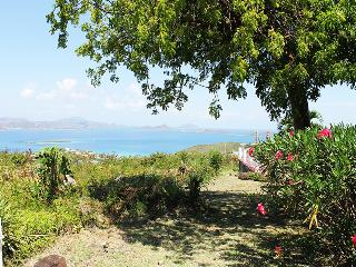 Sunset Ridge Villa D - Cruz Bay vacation rentals
