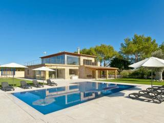 Modern finca with pool surrounded by vineyards - Binissalem vacation rentals