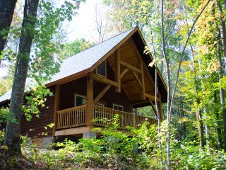 Fayette Station at Adventures on the Gorge - Lansing vacation rentals