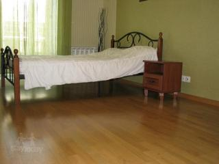 Apartment in Saint-Petersburg #1317 - Saint Petersburg vacation rentals