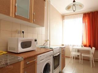 Cozy 1 bedroom Condo in Moscow - Moscow vacation rentals