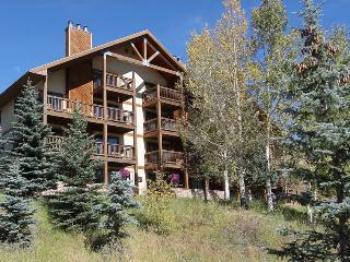 Great 2 Bedroom condo, hot tub, short walk to base area. 5th nt free! - Crested Butte vacation rentals