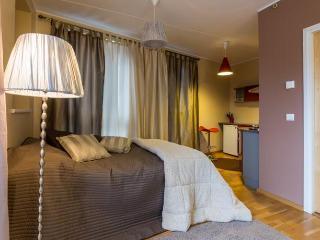 Central Apartment - Tallinn vacation rentals