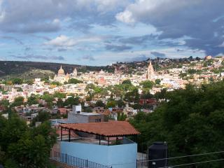 A VIEW FROM THE TERRACE! - San Miguel de Allende vacation rentals