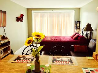 Downtown Frisco Studio w/ Full Kitchen & Hot Tub . - Frisco vacation rentals