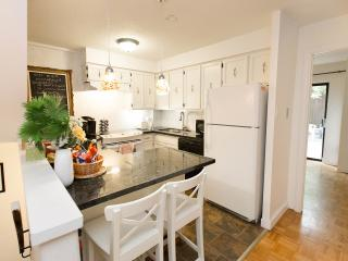 Fully Furnished Studio Apartment  in Toronto - Toronto vacation rentals
