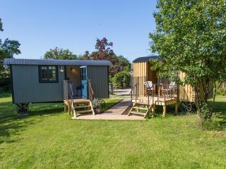 1 bedroom Shepherds hut with Balcony in West Grinstead - West Grinstead vacation rentals