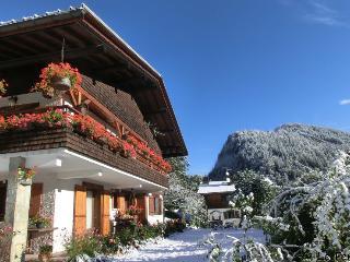 Appartement skis aux pieds en rez de jardin - La Clusaz vacation rentals