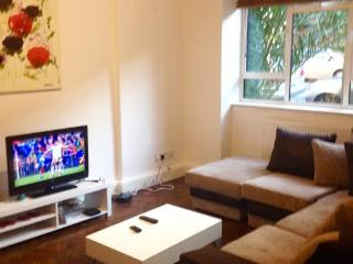 Luxury 2 bed Home - London vacation rentals