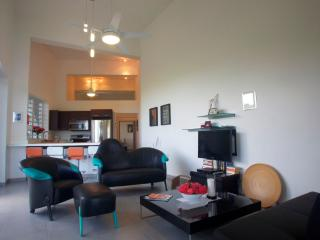Paradise Hill Apartment with view of Caribbean Sea - Rincon vacation rentals