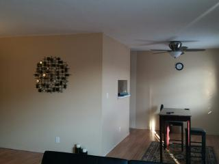 Nice Condo with Internet Access and A/C - Iowa City vacation rentals