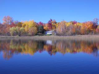 Private Lake Shore Cabin  in Vacation Land! - Cohasset vacation rentals