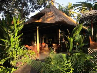 Chill out along the rice fields - close to Ubud - Lodtunduh vacation rentals