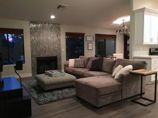 Modern Home near Downtown Chandler + pool & citrus - Chandler vacation rentals