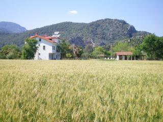 Apartment with large pool and country views - Dalyan vacation rentals