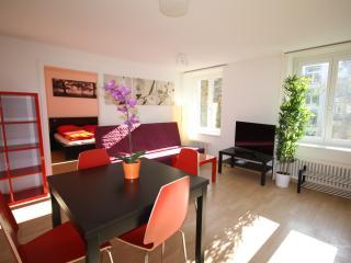 ZH Rodriguez - Stauffacher HITrental Apartment Zurich - Zurich vacation rentals