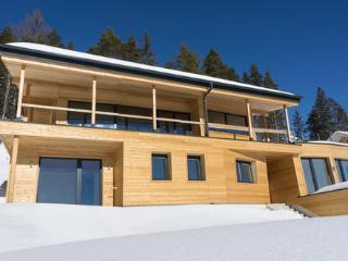 Ferdi Mountain Base - a Contemporary House in Austria - Pichl vacation rentals
